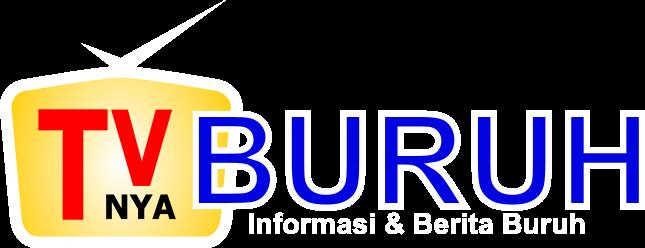 logo tvnya